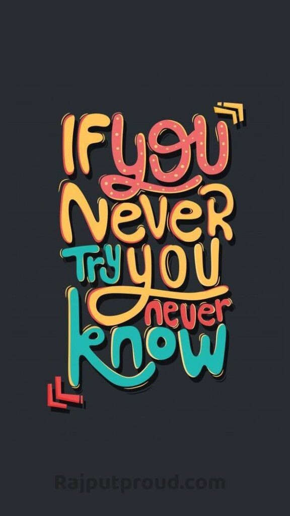 If You Never try , you never know.